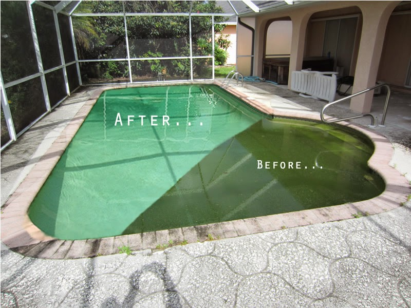On-Time Pool Service Turns Even the Greenest Pool Water Crystal Clear